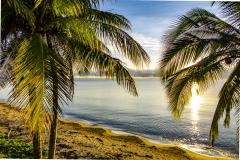 mission-beach-bingil-dawn-3000px-104