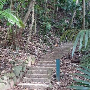 Bicton Hill Walking Track